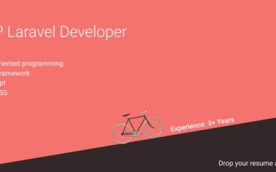 PHP Laravel Developer