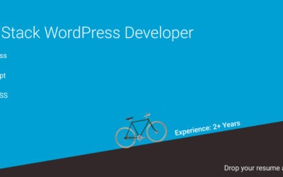 Full Stack WordPress Developer
